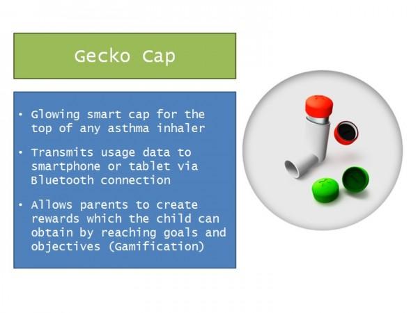 GeckoCap